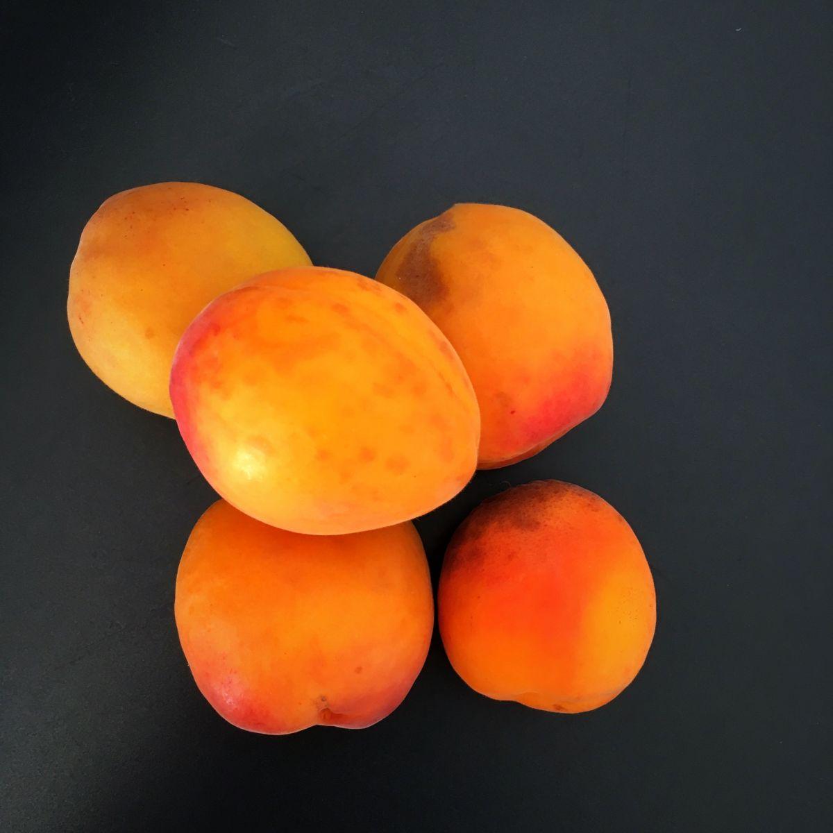 confiture abricot du valais